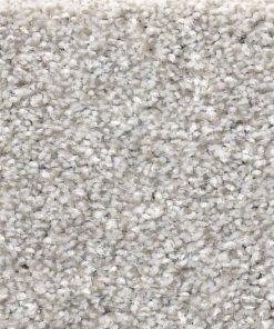 Clay 00122 - Shaw Carpet Make it Mine
