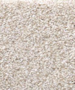 Desert Light 00121 - Shaw Carpet Make it Mine