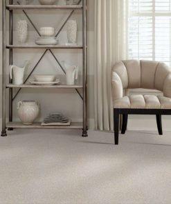 Desert Light 00121 full room - Shaw Carpet Make it Mine
