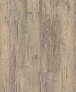 Smoky Oak 00556 - Shaw LVP - Endura Plus