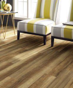 Tawny Oak 00203 Full Room - Shaw LVP - Endura Plus