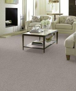 Winter Dunes 00123 full room - Shaw Carpet Make it Mine